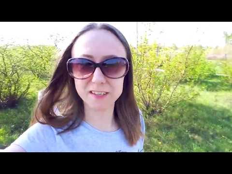 Vlog:9 мая.Что за растение такое?!Лилино выступление.В гостях у бабушки.