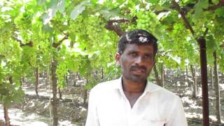 Solapur Chandrakant laute