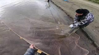 Рыбалка.Первая РЯПУШКА!