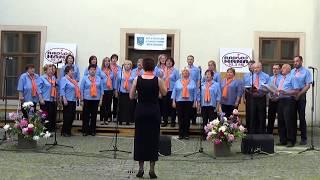 Choir Sternberk - V Kolaji Voda