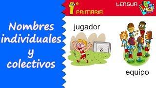 Lengua Castellana. 1º Primaria. Tema 8: Nombres individuales y colectivos