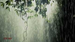 Игорь Тальков ~ Летний дождь
