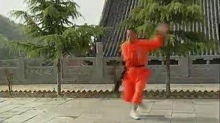 Shaolin long kung fu