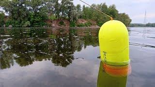 Рыба ловля сомов