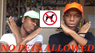 "Tutweezy ""Animal rights people be like"" (feat. coldgamekelv) REACTION!!!"