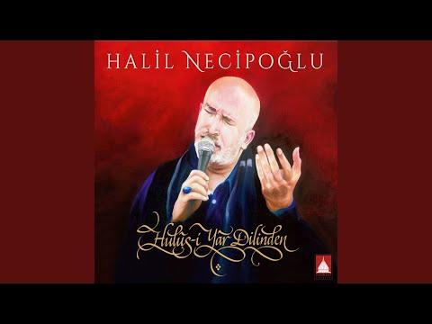 Halil Necipoğlu - Karanfiller klip izle
