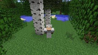 Minecraft - Pixelmon - Pokemon Mod - Episode 1