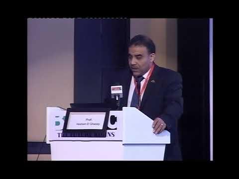Prof Hesham EL Ghazaly