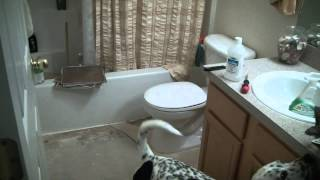 DIY self stick tile laying & Bathroom renovation home improvement