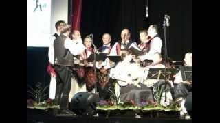 preview picture of video 'Tamburica Uzlop - Črni oči hodmo spat - koncert&vino 27.05.12 - Uzlop/Oslip - AUT'