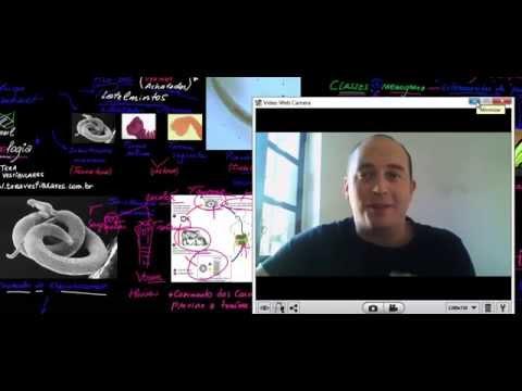 Tratamentul simptomelor de helmint