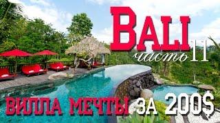 Остров Бали, Убуд | Шикарная вилла, рисовые террасы, лес обезьян, тропинки художников, водопад