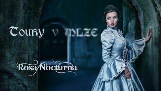 ROSA NOCTURNA - Touhy v mlze (Lyric video)