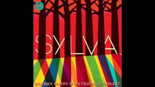 Sylva - Snarky Puppy & Metropole Orkest (HQ)