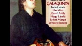 A hetedik   Sebő Ferenc Galagonya