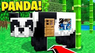 How to Live Inside a PANDA in Minecraft Tutorial! (Pocket Edition, PS4/3, Xbox, PC, Switch)
