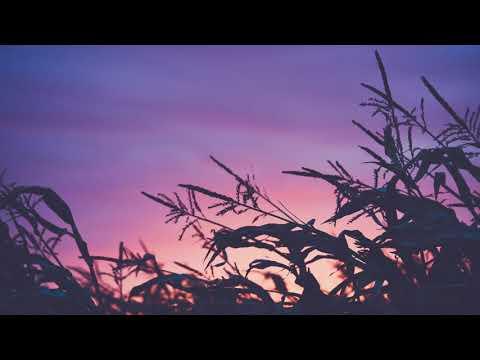 Feel Love | Beautiful Chill Music
