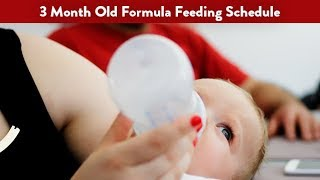 3 Month Old Formula Feeding Schedule | CloudMom