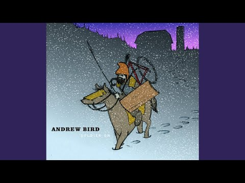 Sic of Elephants (Song) by Andrew Bird