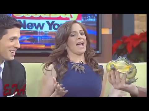 Funny Hot Pranks Sexy girls doing stupid things Sexy News Bloopers Adult Banned Commercials July