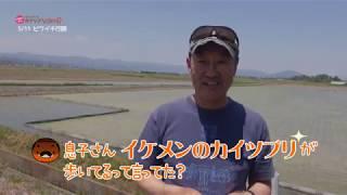 2019/07/15放送・知ったかぶりカイツブリにゅーす