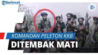 Komandan Peleton KKB Ditembak Mati, Video Detik-detik Baku Tembak Terekam di HP Ferry Ellas