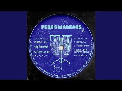 Bambaataa (Luna City Express Remix)
