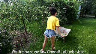 Sexy Girl Harvesting Apples - World Mega Machines Teaser for New Channel SUBSCRIBE!