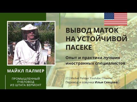 Вывод маток на устойчивой пасеке (лекция Майкла Палмера, 2013)
