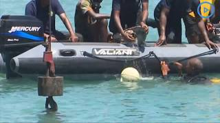 Navy divers safely secure the plunged saloon car at the Likoni