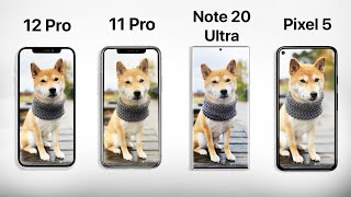 iPhone 12 Pro vs 11 Pro vs Pixel 5 vs Note 20 Ultra - The ULTIMATE Camera Comparison!