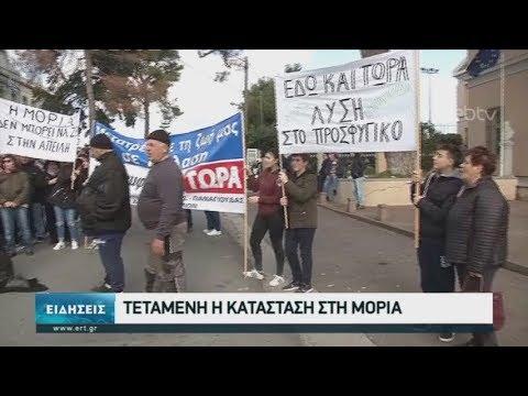 Τεταμένη η κατάσταση στη Μοριά  05/02/2020   ΕΡΤ