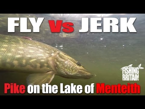 Pike on the Lake of Menteith Fly and Lure  – Fishing Britain Short