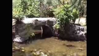 preview picture of video 'Taleyfac Spanish Bridge, Agat, Guam'