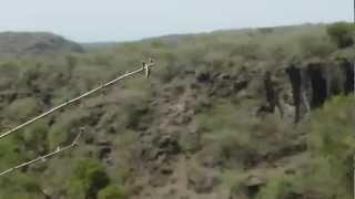 Etiopia Park Narodowy Awash