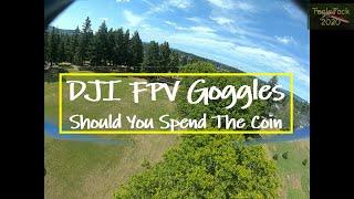 DJI HD FPV Goggle Review