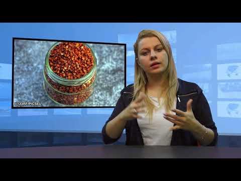 Leczenie hemoroidów marchewki