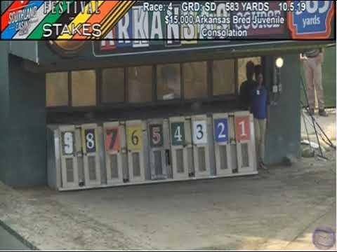 SL FOS RACE 4 ARKANSAS BRED JUVENILE CONSOLATION T ZELDA EPISODE
