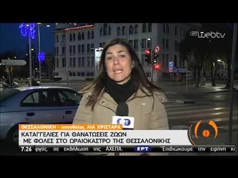 Φόλες, θανατώσεις και βασανιστήρια ζώων στο Ωραιόκαστρο   07/01/2020   ΕΡΤ