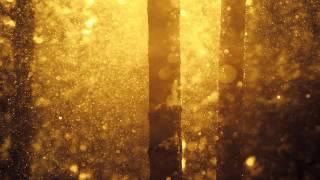 Eimear - Crossing Stars (Gregory Esayan Remix)