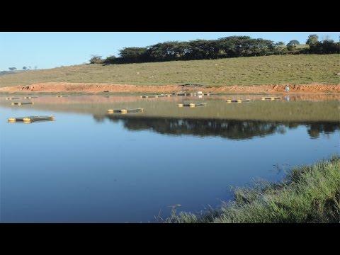 Lista de Cursos na Área de Hidrologia