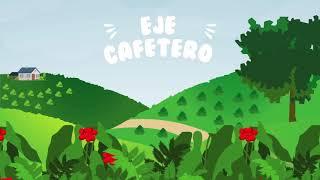 TacuaraClub - Animación Eje Cafetero