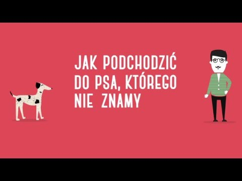 Aktywatory dla kobiet w Petersburgu