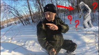 Кого я встретил в лесу.Поход в зимний лес.Село Грязное