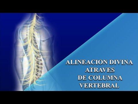 Alineacion Divina atraves de alineacion de columna vertebral con energia Cristica