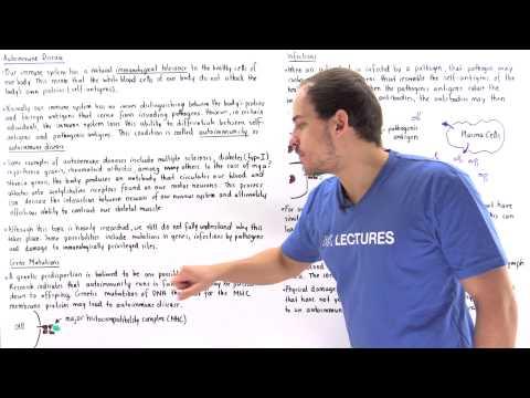 Video Autoimmunity (Autoimmune Diease)