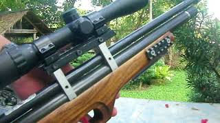 Bullpup airgun from Philippines 2 ( PCP )