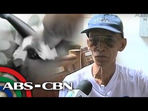 Aloe para sa paggamot ng kuko halamang-singaw sa aking mga paa