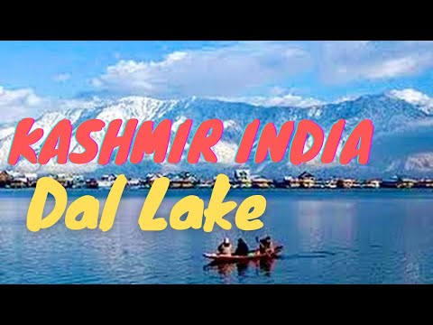 خوبصورت سرینگر ڈیل جھیل شاکارا بوٹ سواری کشمیر بھارت