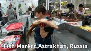 Рыбный рынок в Астрахани где находится
